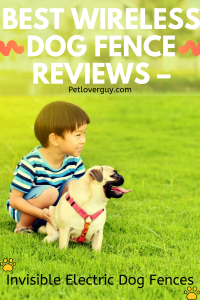 Best Wireless Dog Fence Reviews – Invisible Electric Dog Fences