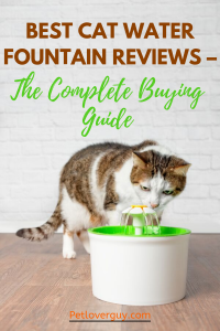 Best Cat Water Fountain Reviews – The Complete Buying Guide