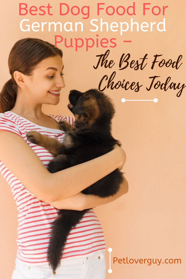Best Dog Food For German Shepherd Puppies – The Best Food Choices Today