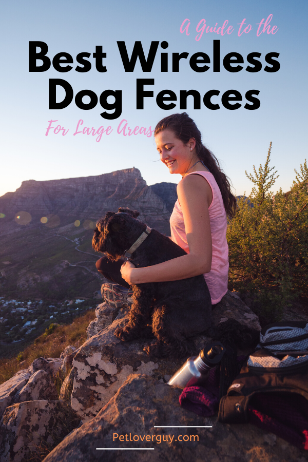 A Guide to the Best Wireless Dog Fences For Large Areas