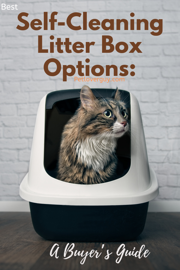 Best Self-Cleaning Litter Box Options