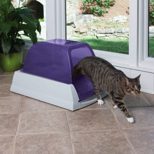 ScoopFree Ultra Self-Cleaning Litter Box