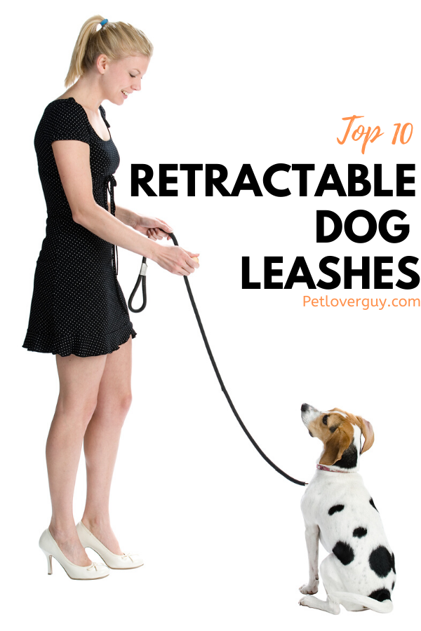 Top 10 Retractable Dog Leashes