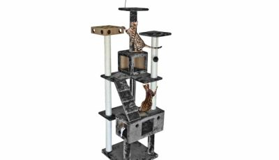 Tiger Tough Floor-to-Ceiling Cat Tree House Furniture Review