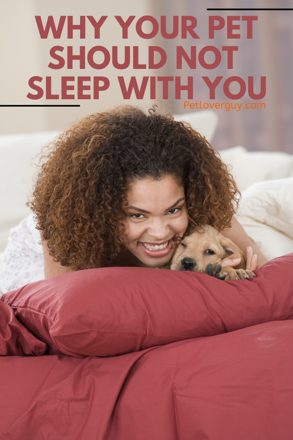 Why your pet should not sleep with you