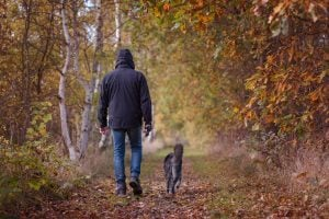 physical benefits walking dog