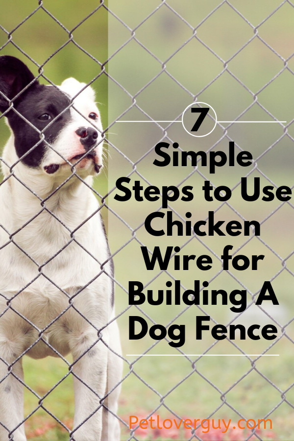 Chicken Wire for Dog Fence
