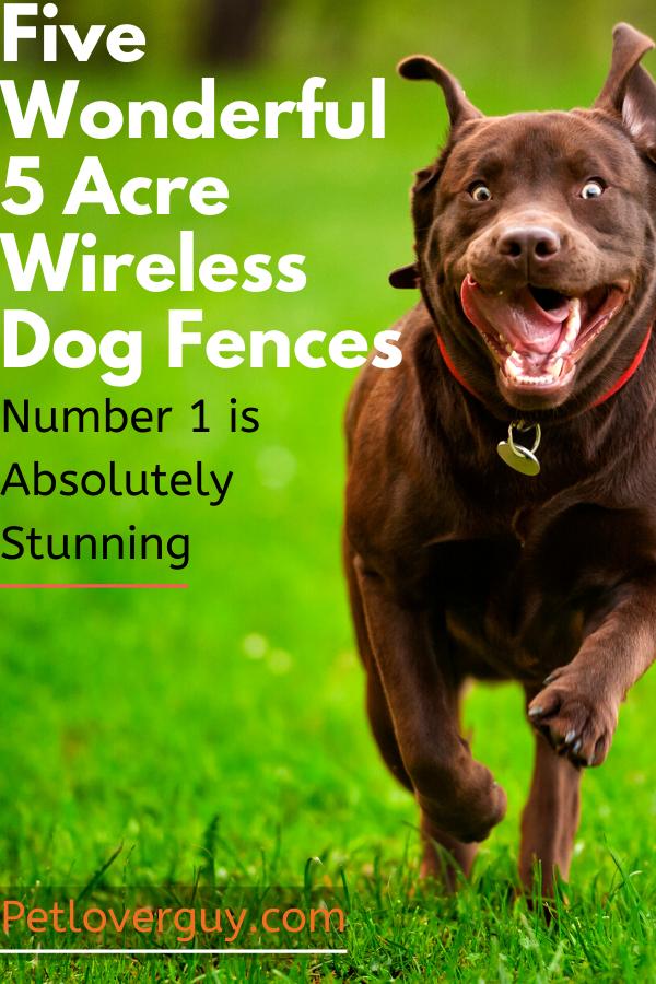 5 Acre Wireless Dog Fences