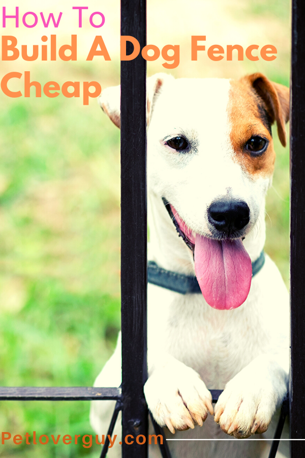 How To Build A Dog Fence Cheap