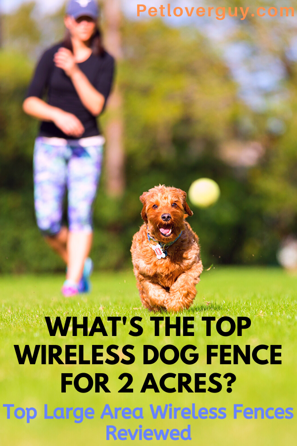 Wireless Dog Fence for 2 Acres