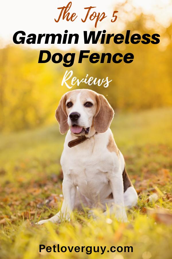 garmin wireless dog fence reviews