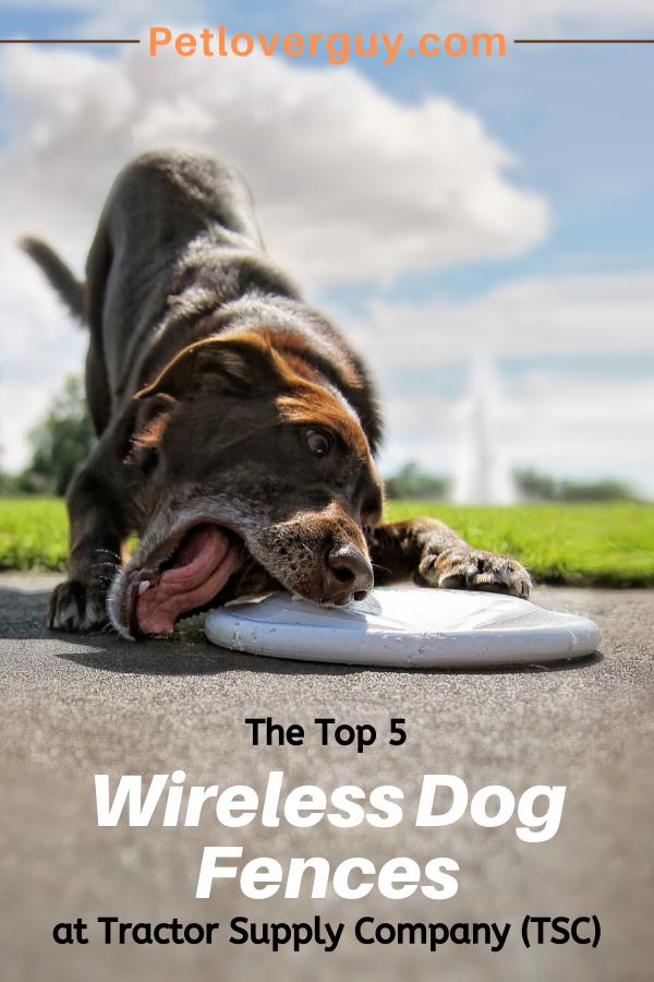 tsc wireless dog fence