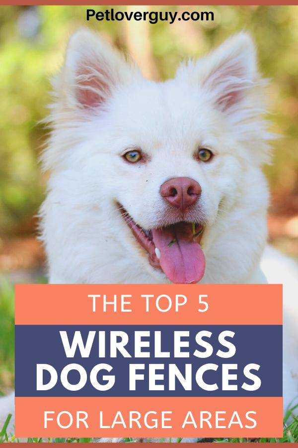 Large Wireless Dog Fence
