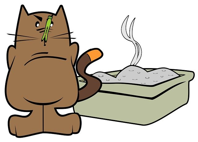 Do Self Cleaning Litter Boxes Really Work?
